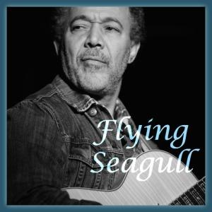 Flying_Seagull